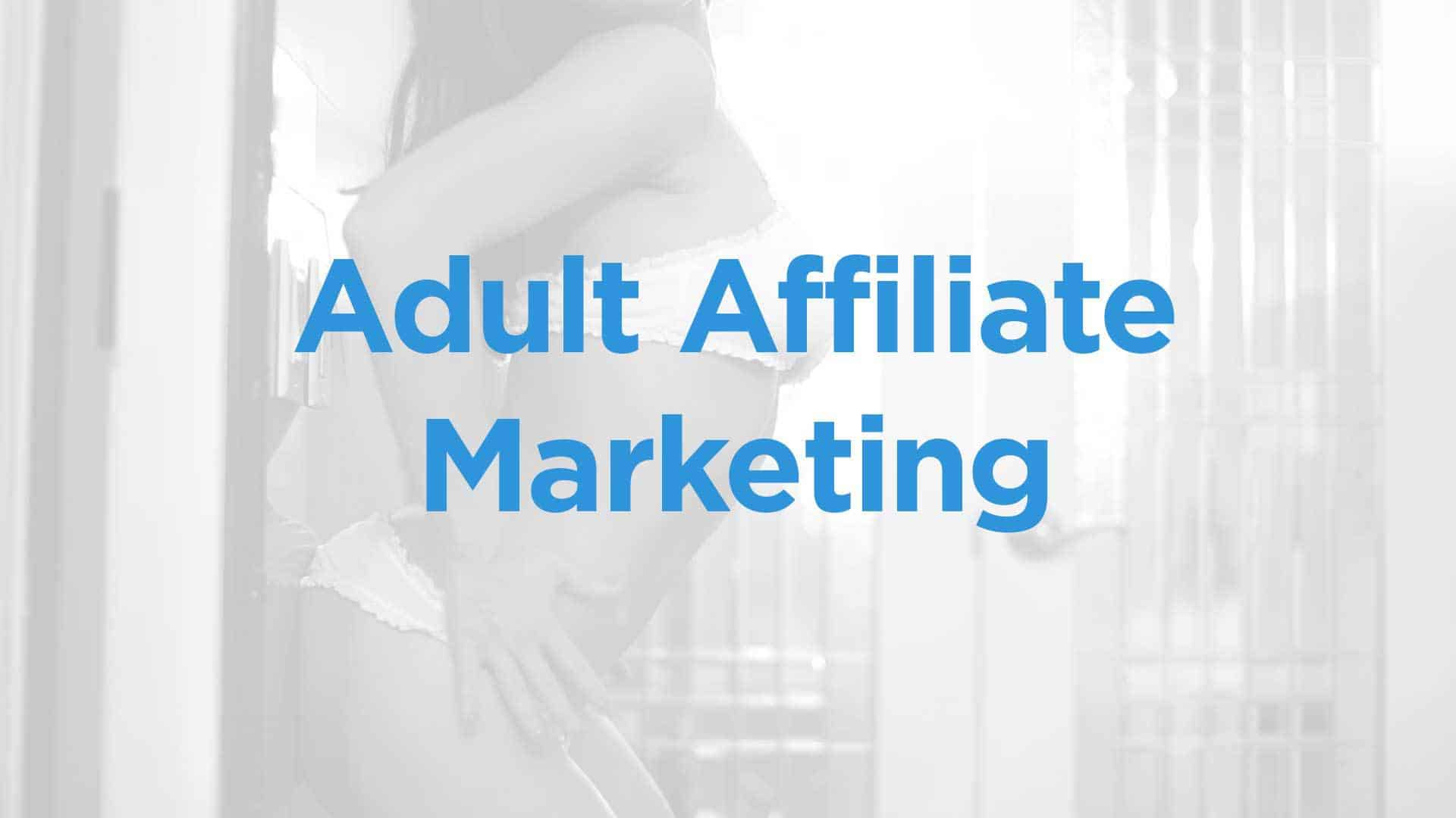 adult affiliate marketing